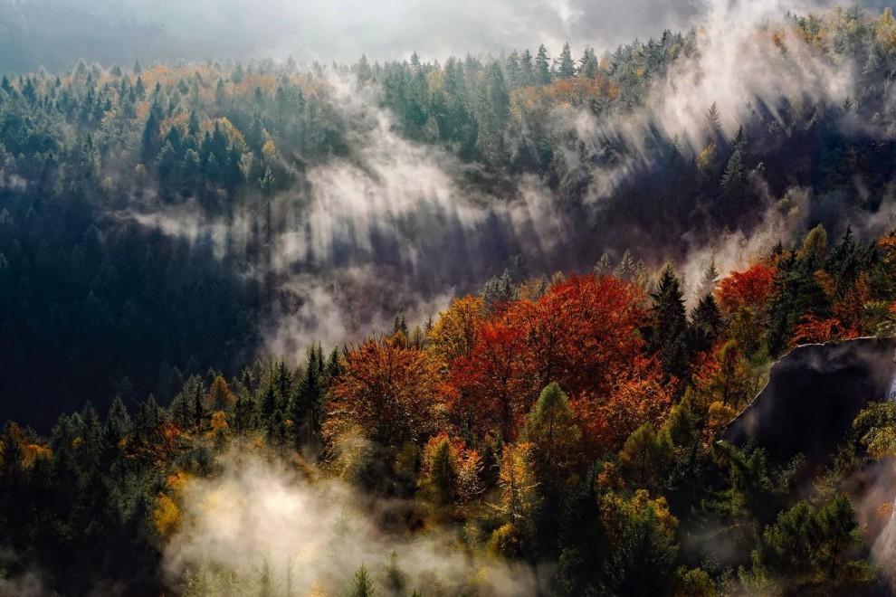 Paisaje de la Selva Negra en Alemania