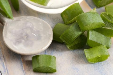 El aloe vera tiene muchos usos en salud y belleza por sus propiedades.