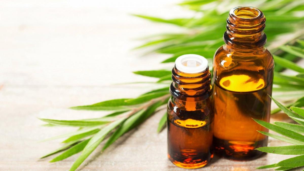 El aceite esencial de árbol de té es uno de los más populares.