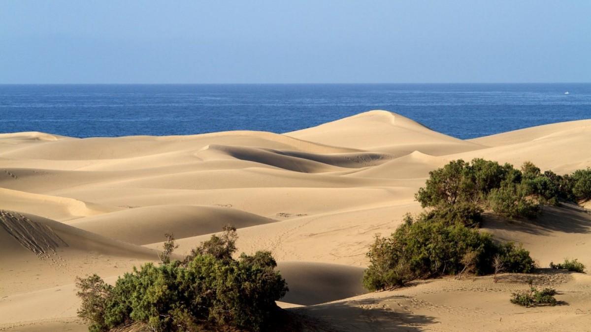 En la extensa playa de Maspalomas también hay espacio para nudistas.
