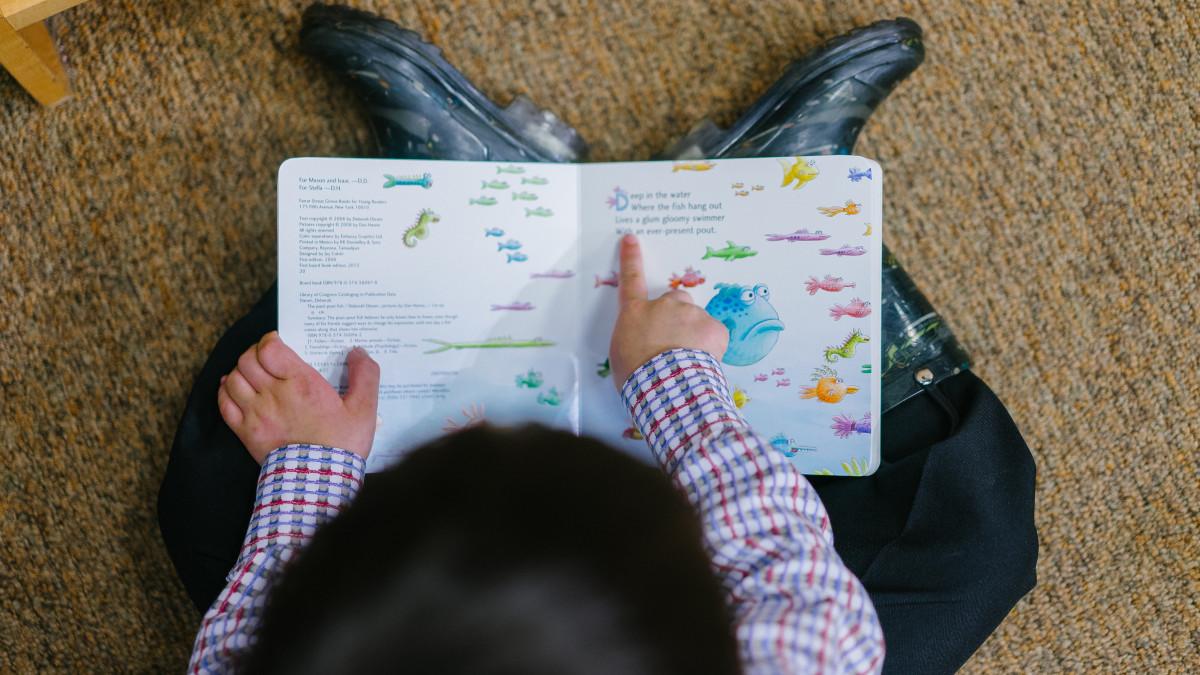 Los 20 Mejores Poemas Para Niños