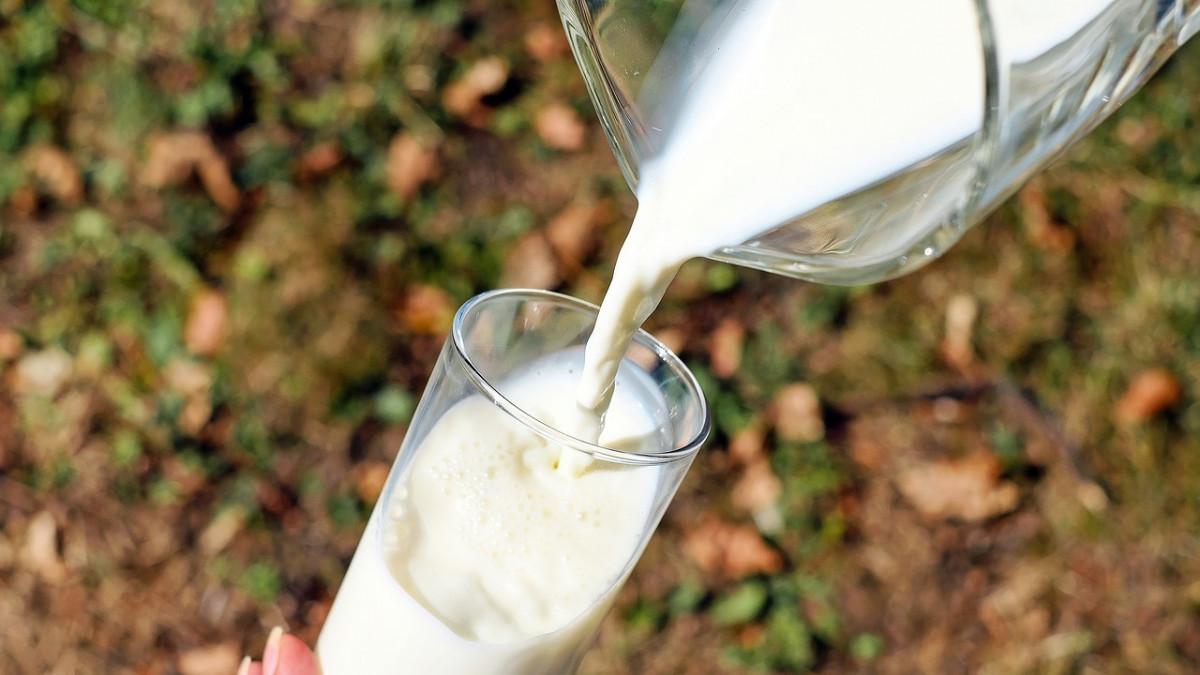 14 buenas razones para dejar la leche