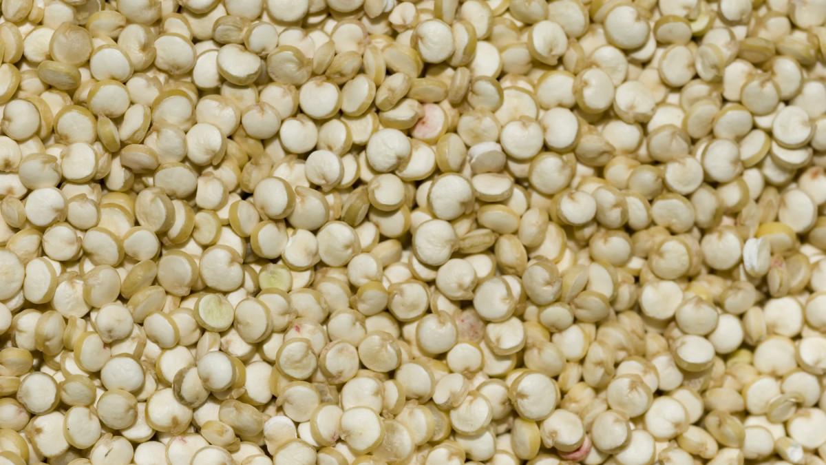 Quinoa: 12 propiedades y beneficios de este alimento