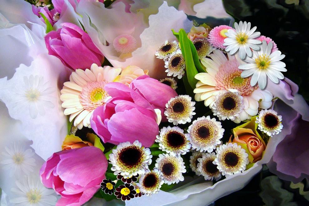 ¿Conoces el significado de estas 20 flores?
