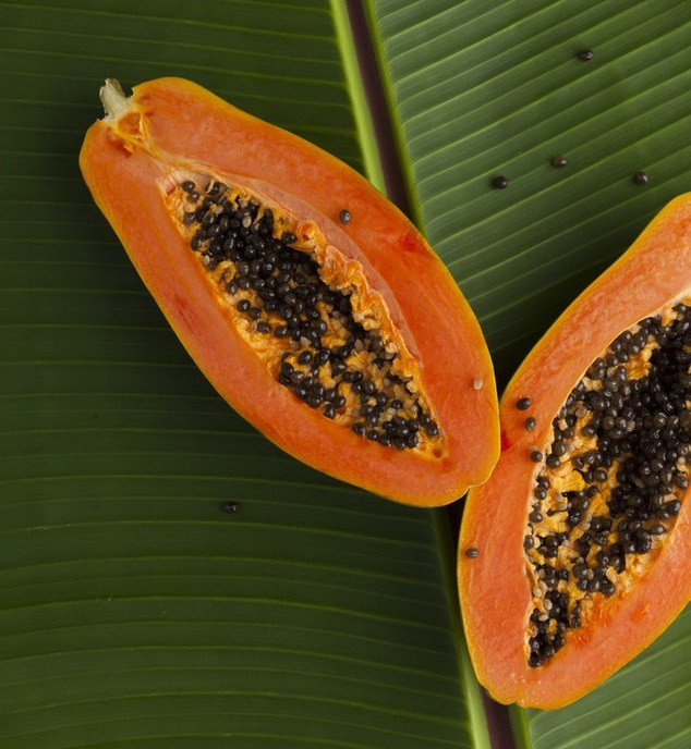Papaya beneficios