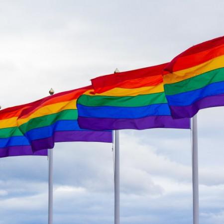 Tipos de homosexualidad