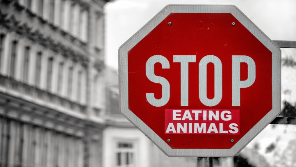 Diferencias entre vegetarianos y veganos
