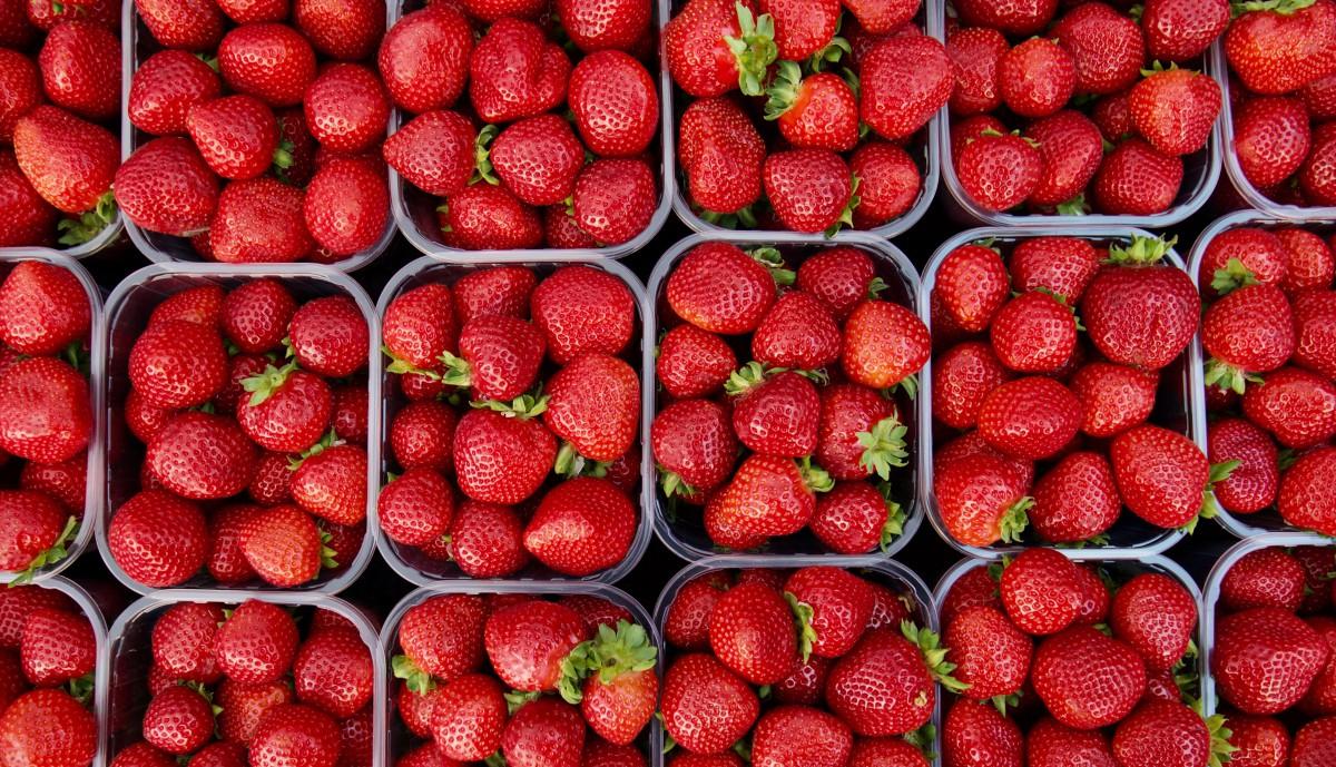 Fresas en un menú saludable