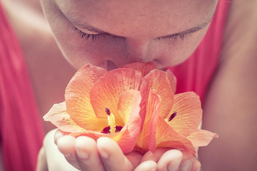 Los 12 aromas perfectos para tu hogar