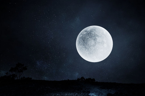 Frases luna