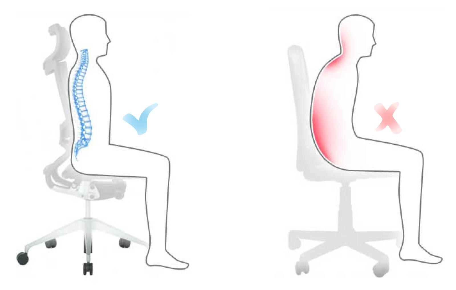 Postura músculos