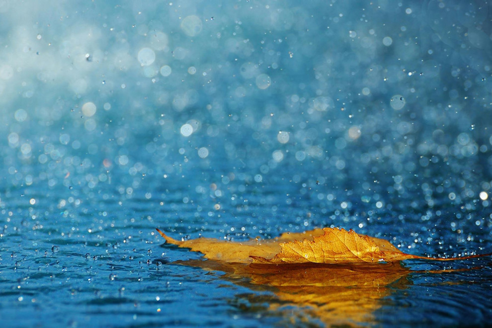 Frases lluvia