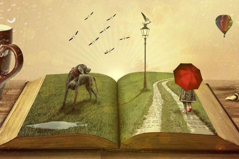 Tipos historias