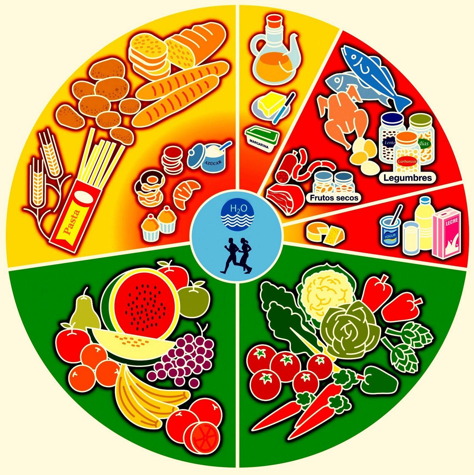 Qué es rueda alimentos