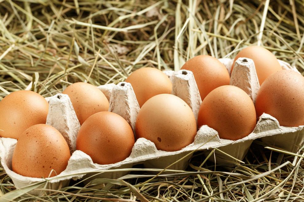 Tipos huevos