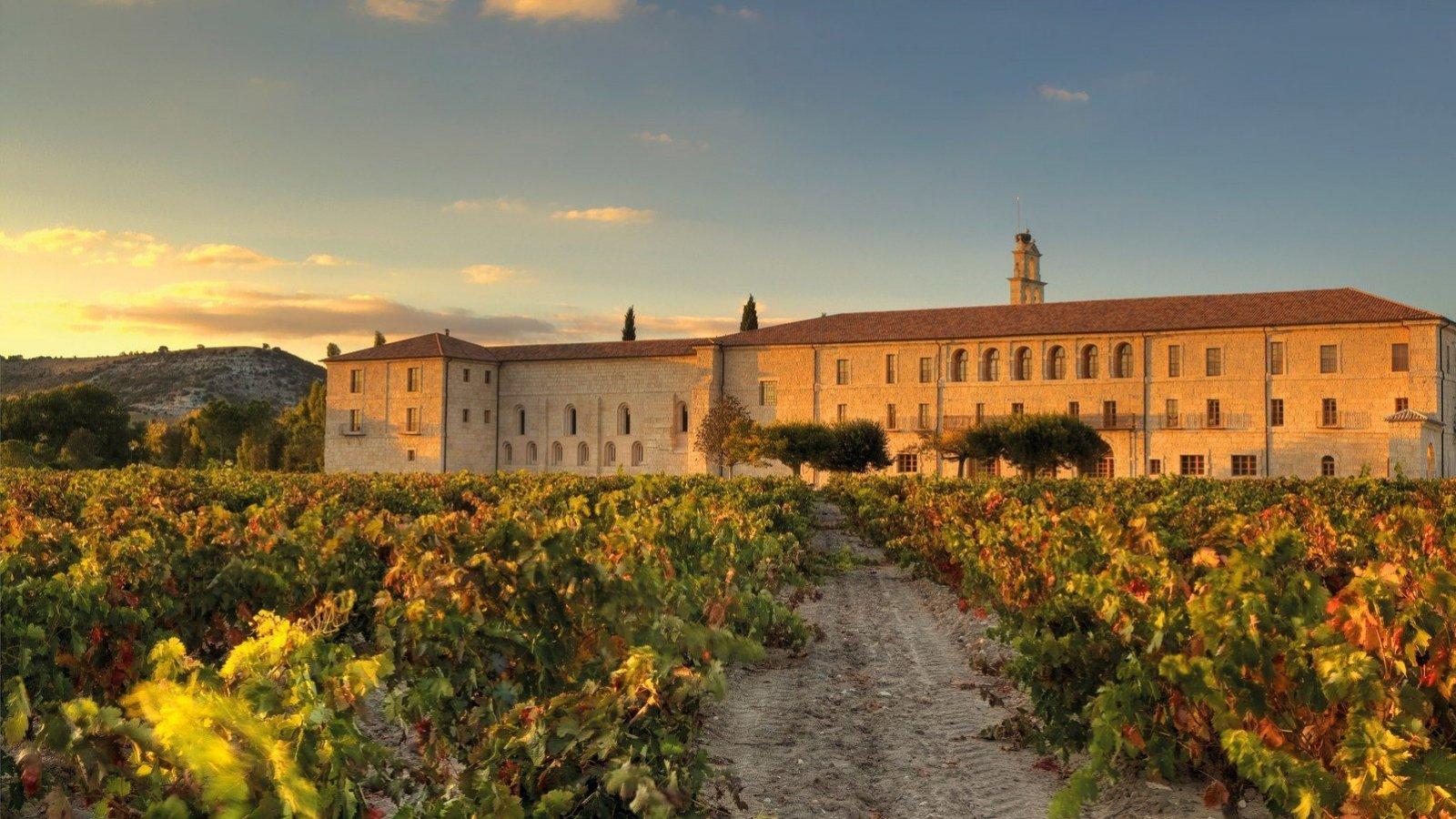 Un enclave de lujo y tranquilidad entre viñedos.