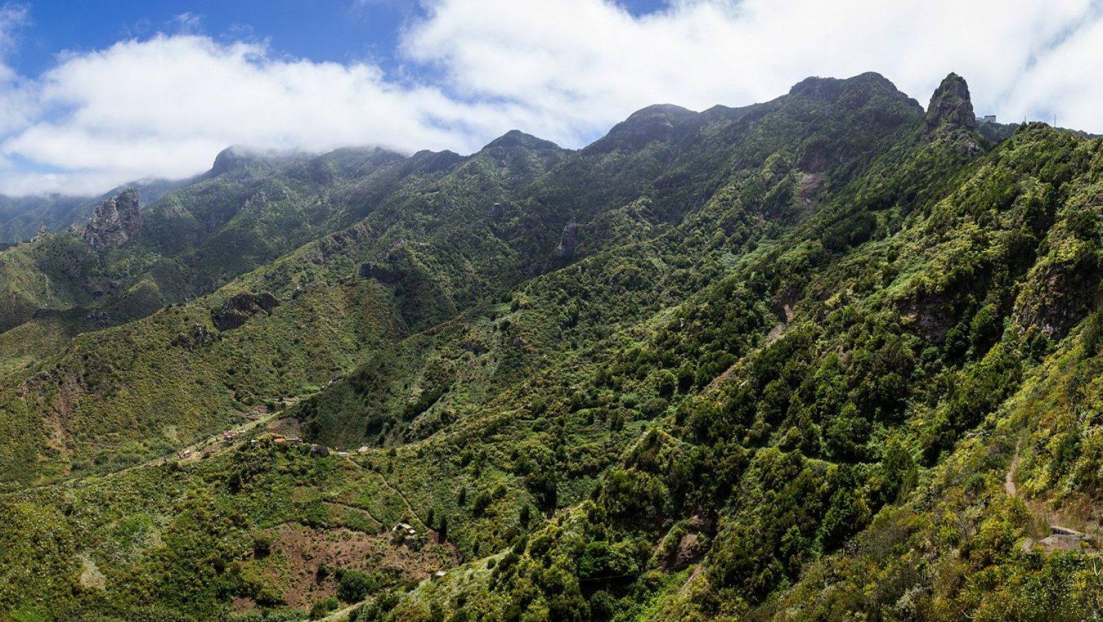 La verde y frondosa montaña de Anaga en Tenerife.
