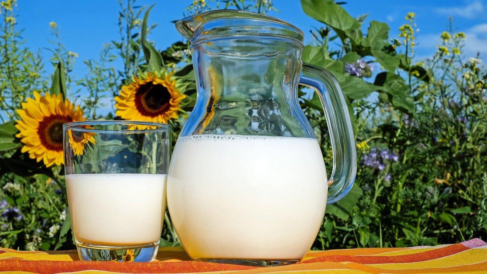 La leche contiene ácidos naturales que estimulan la producción de colágeno en nuestra piel .